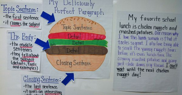 essay hamburger model
