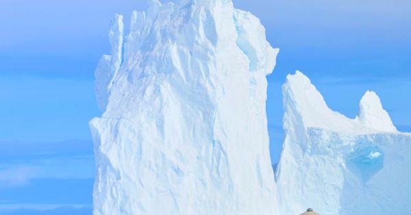arctic watch nunavut