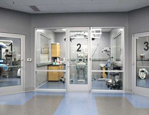 Lots Of Windows Make Small Spaces Feel Bigger Hospital Design Veterinary Clinic Veterinary Hospital