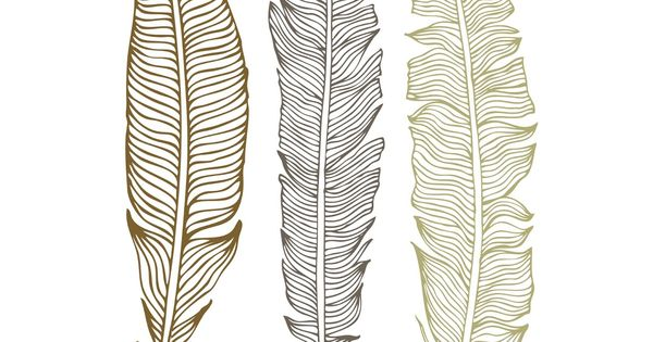 Ideas of drawing feathers