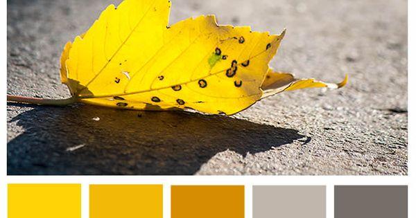 #Farbpalette sonnig, heiter, herbstlich, warm, gelb, grau ...
