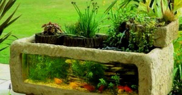 Outdoor Fish Tank/ Water Garden