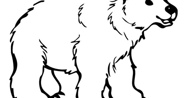 Animal Colouring Pages Sparklebox : Bear template craft ideas