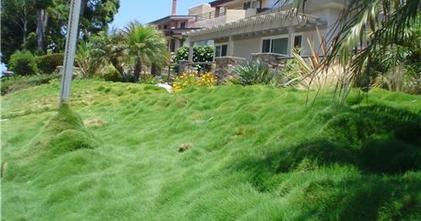 Pin By Landscaping Network On Wildlife Friendly Landscape Design Hillside Landscaping Landscaping A Slope Landscaping Tips