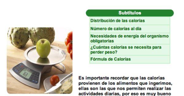 Calor as y nesecidades energ ticas nutrici n las calor as que ingerimos a trav s de los - Las calorias de los alimentos ...