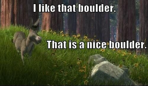 Shrek Donkey Quote Movie Animation Boulder Single Relatable Funny Comics Bones Funny Funny Cute