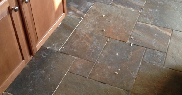 New Kitchen Floors Ayers Rock Rustic Remnant Love