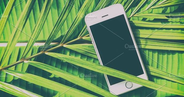 Smartphone on a green natural background tropical, palm leaves, eco design, communication in the journey