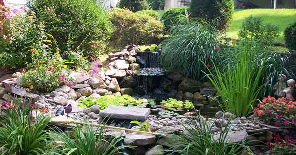 Plants to surround ponds ideas for pond decorating for Pond surround ideas