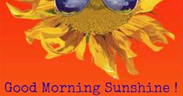 Good Morning Sunshine Facebook : Good morning sunshine quote via carol s country