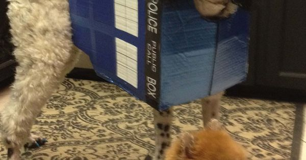 We Are A Tardis And A Dalek Our Mom Watches Dr Who