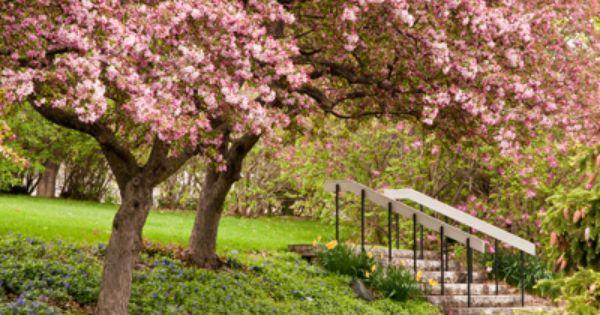Weddings And Meetings Minnesota Landscaping Arboretum Landscape