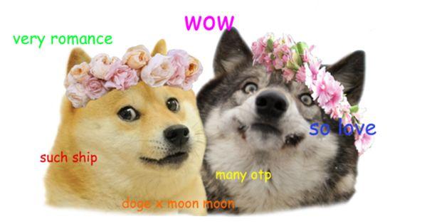 Doge Moon Moon So Perfection Doge Meme Funny Animals Doge