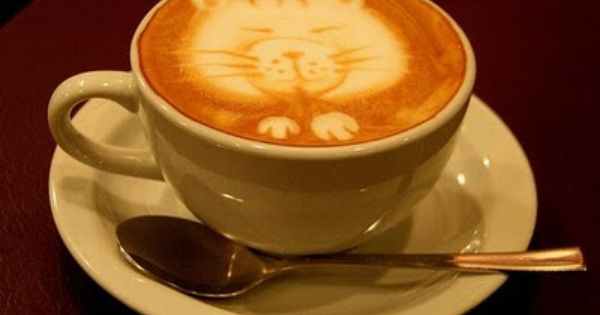 Cats And Coffee Adorable Perfection Cat Coffee Art Coffee Art Cat Coffee