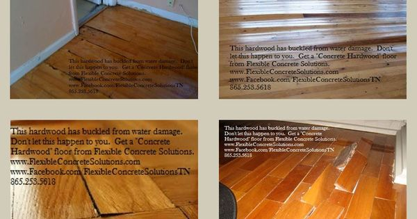 Wood flooring is easily damaged by water concrete for Hardwood floors knoxville tn