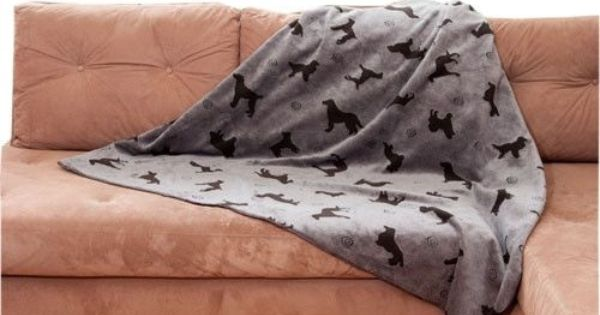 Dog Sofa Cover with Dog Pattern Couch protector and Plush : 2905c44f0f2d07f8c5d6c3feecb08ac9 from www.pinterest.com size 600 x 315 jpeg 29kB