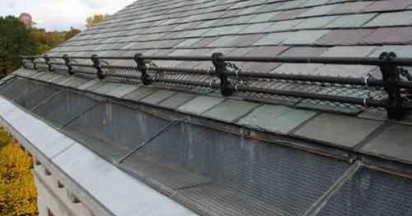Rhino Guard Gutter Is One Of The Best Possible Ways To Protect