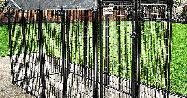 Premium Dog Kennel
