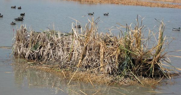 Duck Blinds Duck Buddies Duck Blinds Fiberglass Blind
