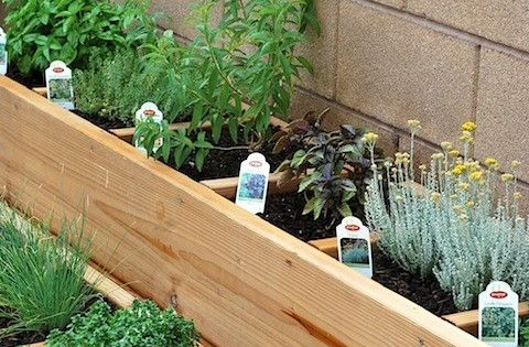 Raised bed Herb Garden Like to do a small patio garden, this
