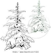 Snow Covered Spruce By Teresa Ascone Winter Drawings Watercolor Trees Tree Drawing
