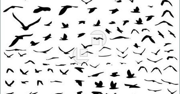 Different bird tattoo ideas