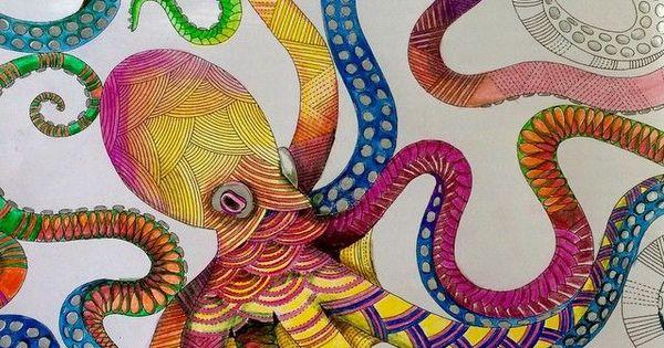 Animal Kingdom Millie Marotta Octopus
