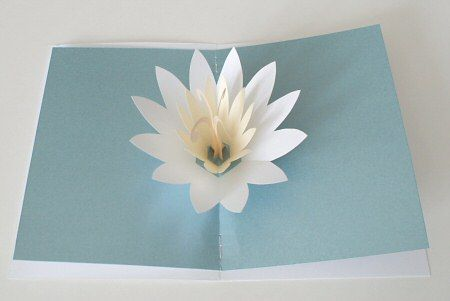 Lotus Blossom Pop Up Card Pop Up Flower Cards Birthday Card Pop Up Cards Handmade