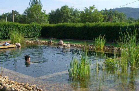 piscinas naturales construcci n piscina natural sistemas