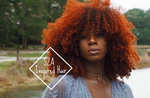 Youtube Afro Hair Dye Hair Color For Black Hair Dyed Natural Hair