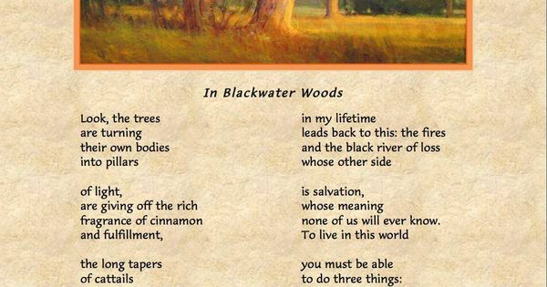 In Blackwater Woods Mary Oliver Poems I Love Pinterest