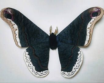 Faser Skulptur Promethea Motte 4 Flugel Skulpturen Falter Schmetterling