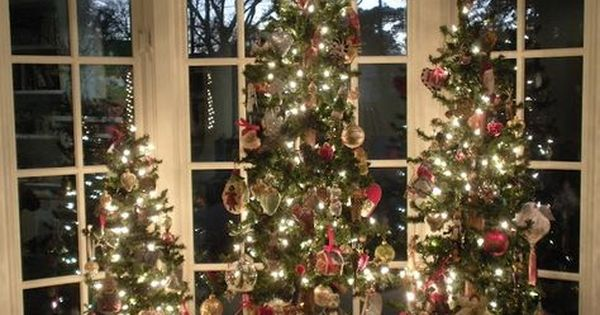 Trees In A Bay Window Christmas Trees Pinterest Christmas Window Decorations Christmas Window Decoration Christmas Window Display