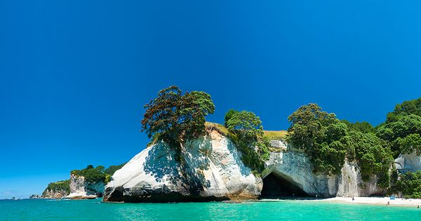 Penembakan New Zealand Pinterest: Cathedral Cove. New Zealand