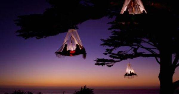 Coastal Tree Camping, Elk, California I WILL be doing this soon!!