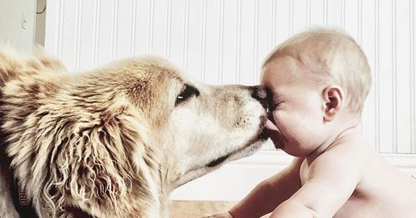 This Baby And His Pup Have Our Dream Relationship Baby Dogs