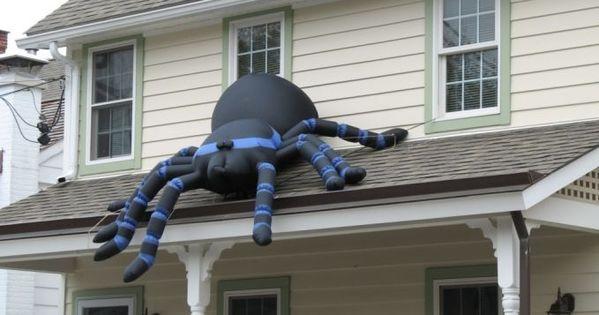 comment lutter contre les araign es la maison. Black Bedroom Furniture Sets. Home Design Ideas