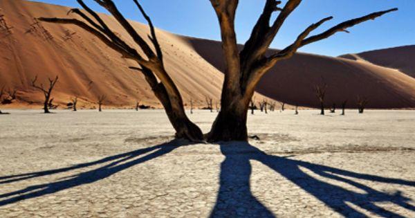 sahara desert essay