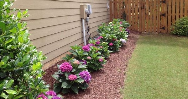 Landscaping Idea For The Side Of The House Creating A