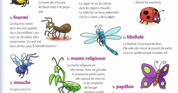 Source mon premier dictionnaire de fran ais larousse activities french pinterest - Dictionnaire de cuisine larousse ...