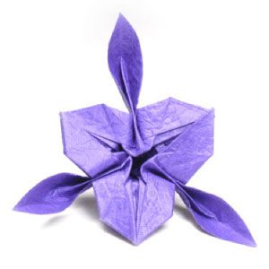 Origami Iris Flower Intermediate Level Origami Flowers How To Make Origami Iris Flowers