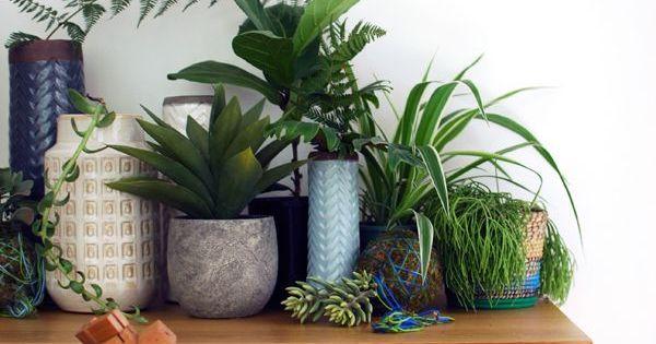 Id e d co r aliser un coin de jungle urbaine avec des - Pot deco interieur ...