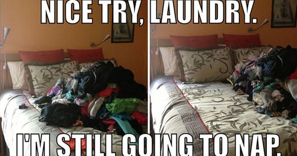 Nice Try Laundry Laundry Humor Haha Funny Laugh