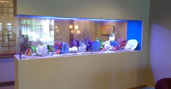 20 of the Coolest Wall Fish Tank Designs  Swim, Fisher and Built ins