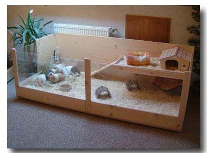 rechteck k fig f r meerschweinchen in 2 gr en l und xl xoppla k fig pinterest. Black Bedroom Furniture Sets. Home Design Ideas
