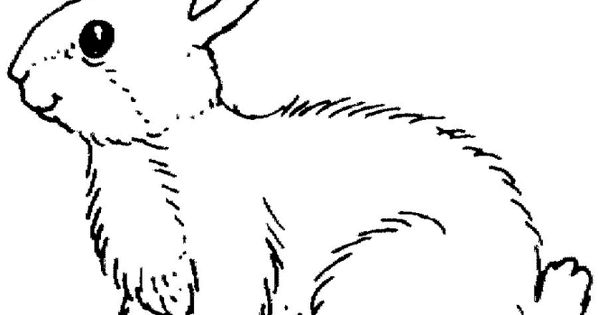Coloringpages1001 Com: Google Image Result For Http://www.coloringpages1001.com