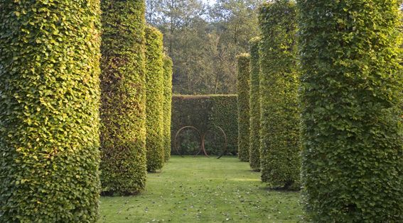 Idee winter tuin idees : topiary cylinders by Marc De Winter : Ideas : Pinterest : Jardins ...