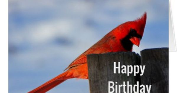 Red Cardinal On Wooden Stump Happy Birthday Card Zazzle Com In 2020 Bird Quotes Sign Quotes Red Birds
