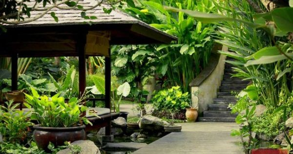 Villa jalak bali garden in my dreams pinterest for Diseno de jardines mexico df