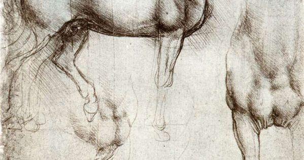 Leonardo da Vinci, Study of horses, c.1490, drawing, Milan. Dimensions: 25 x